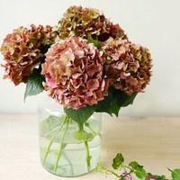 Un bouquet d'hortensias pour vous souhaiter une excellente semaine, que vous soyez en vacances ou encore au travail!  @blooms_france   #omainspiration #fleurs #bonnejournée