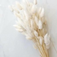 De la douceur, de la douceur et encore de la douceur... 🌾 Doux jeudi! 💕 🌞 #douceur #sweetness  #white