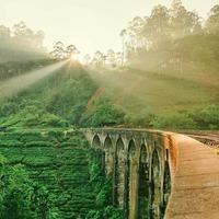 Inspiration du soir... . By @lets.be.awesome  #omainspiration  #lightisstronger  #srilanka